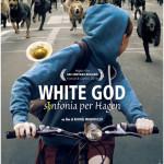 White God - Sinfonia per Hagen di Kornél Mundruczó - poster italia