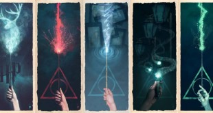harry-potter-hobbs-society-6-home-video-repack