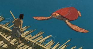 la-tartaruga-rossa-recensione-film-testa