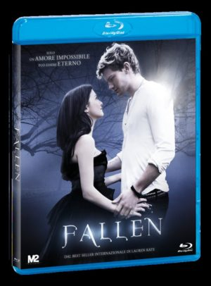 Fallen_BD_p
