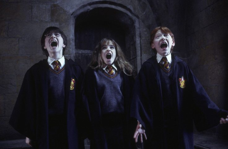wizard-nights-giffoni-harry-potter-Harry-Potter-e-la-camera-dei-segreti-2