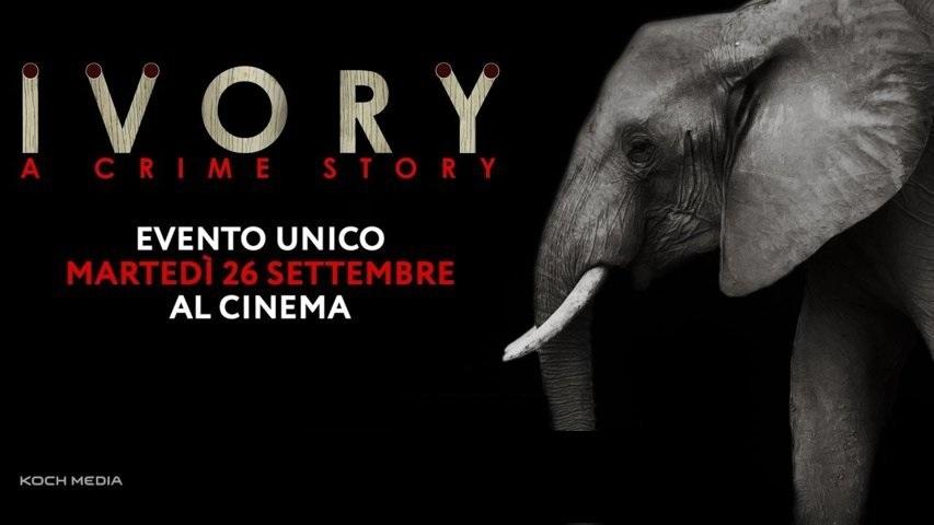 ivory-a-crime-story-recensione-film-copertina