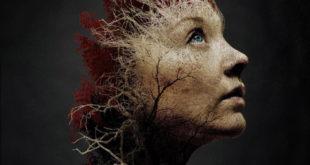 jukai-foresta-suicidi-recensione-film-copertina