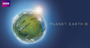 planet-earth-ii-kochmedia-bluray-copertina