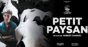 petit-paysan-recensione-film-copertina