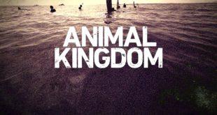 animal-kingdom-s1-dvd-bluray-cover