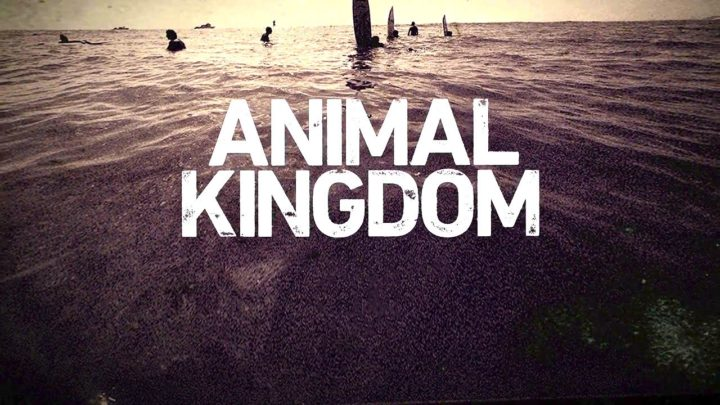 animal-kingdom-s1-dvd-bluray-cover