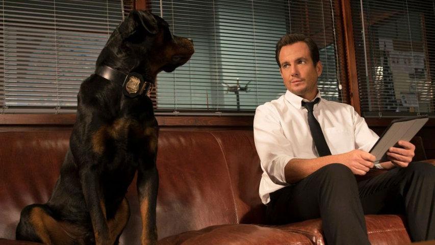 show-dogs-recensione-film-01