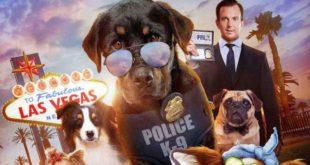 show-dogs-recensione-film-copertina