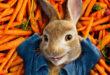 Peter Rabbit con la Voce di Nicola Savino in DVD e Bluray dal 18 Luglio