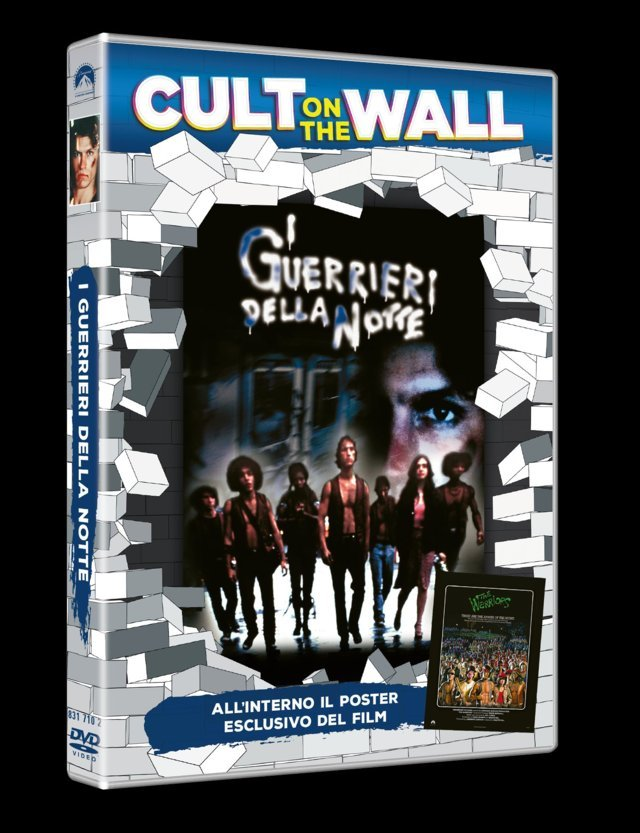 cult-on-the-wall-film-home-video-01