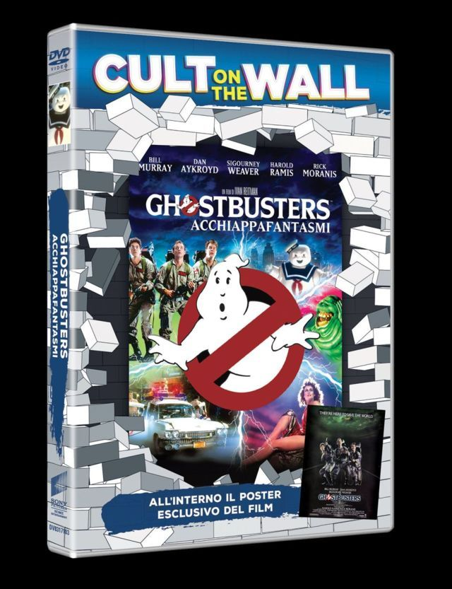 cult-on-the-wall-film-home-video-04