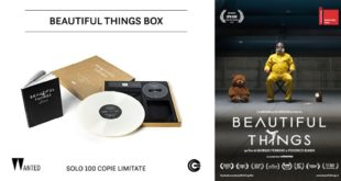 beautiful-things-edizione-collezione-copertina