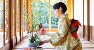 Do. Il cammino giapponese per la felicità di Junko Takahashi – A Giugno in libreria
