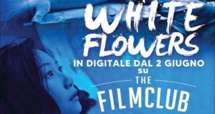 white-flowers-recensione-film-copertina