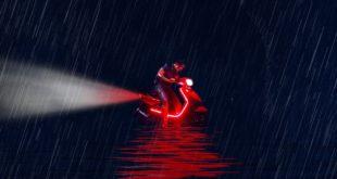 il-lago-delle-oche-selvatiche-recensione-dvd-copertina