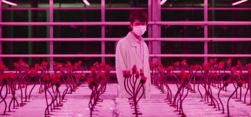 little-joe-recensione-film-01