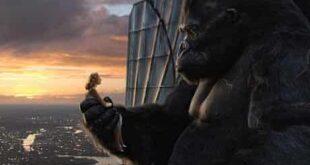 racconti-di-cinema-king-kong-copertina